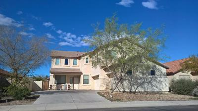 Maricopa Single Family Home For Sale: 22130 N Van Loo Drive