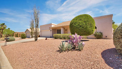Fountain Hills Single Family Home For Sale: 17229 E El Pueblo Boulevard