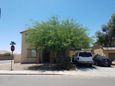 Queen Creek Single Family Home For Sale: 21493 E Roundup Way