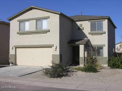 San Tan Valley Single Family Home For Sale: 1788 E Desert Rose Trail