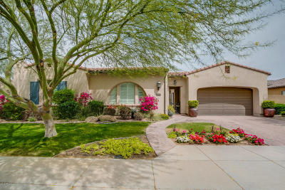 Peoria Single Family Home For Sale: 28939 N 67th Drive