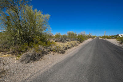 Surprise Residential Lots & Land For Sale: 004xxx W Peak View Road