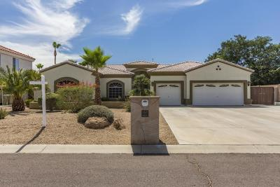 Glendale AZ Single Family Home For Sale: $500,000