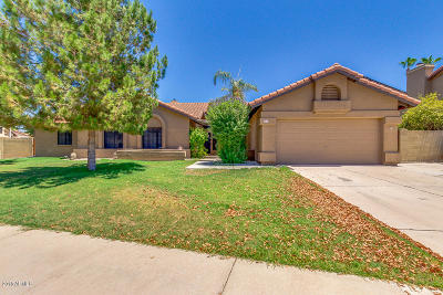 Gilbert Single Family Home For Sale: 17 S Riata Drive