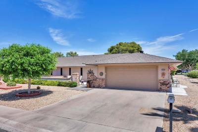 Sun City West Gemini/Twin Home For Sale: 13002 W Desert Glen Drive W