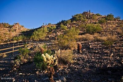 Paradise Valley Residential Lots & Land For Sale: 6800 N 39th Place