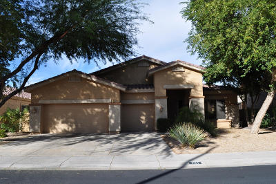 Chandler Single Family Home For Sale: 734 E Gemini Place