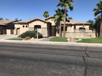 Chandler Single Family Home For Sale: 5359 S Dragoon Drive