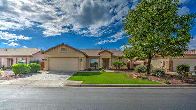 Chandler Single Family Home For Sale: 3051 E Gleneagle Drive