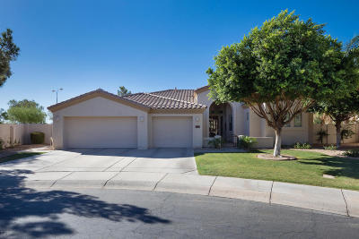 Chandler Single Family Home For Sale: 1974 W Lynx Court