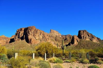 Apache Junction Residential Lots & Land For Sale: 1497 N Holmes Road