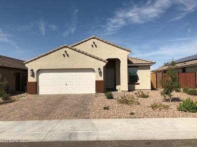 Casa Grande Single Family Home For Sale: 2896 N Taylor Lane