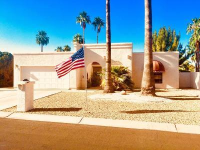 Sun Lakes Single Family Home For Sale: 26449 S Dartford Drive