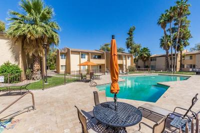Scottsdale  Apartment For Sale: 8055 E Thomas Road #A203