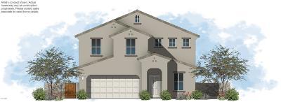 Casa Grande Single Family Home For Sale: 1740 E Desert Breeze Place