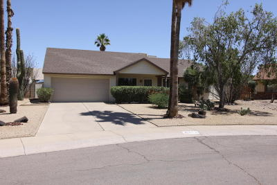 Scottsdale Single Family Home For Sale: 6520 E Sandra Terrace