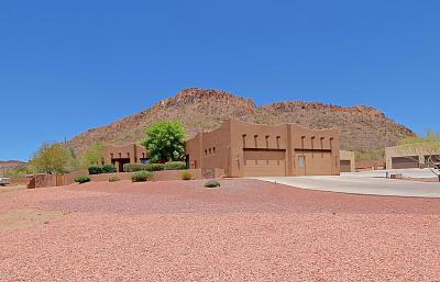 Phoenix Single Family Home For Sale: 1108 E Falling Star Road