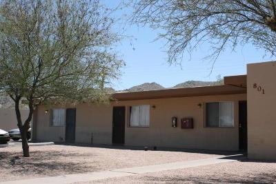 Phoenix Multi Family Home For Sale: 801 Siesta Drive