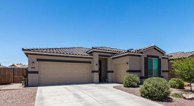 San Tan Valley Single Family Home For Sale: 2041 W Briana Way