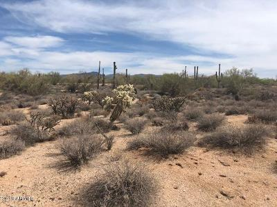 Scottsdale Residential Lots & Land For Sale: 8328 E Whisper Rock Trail