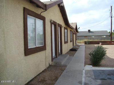 Phoenix Multi Family Home For Sale: 14 31st Avenue