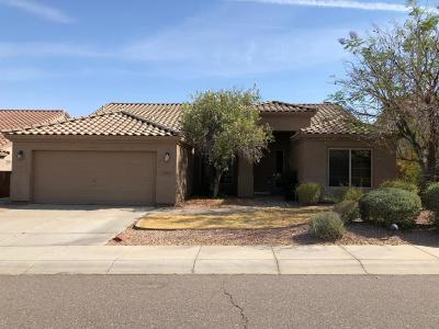Phoenix Single Family Home UCB (Under Contract-Backups): 105 W Glenhaven Drive
