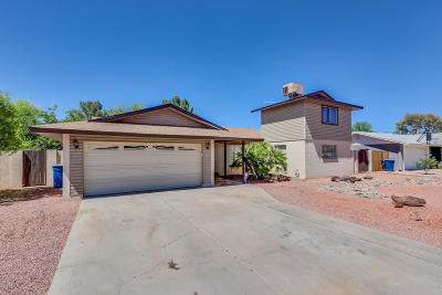 Tempe Single Family Home For Sale: 1110 E Diamond Drive