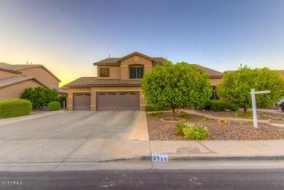 Mesa Single Family Home For Sale: 4506 E Decatur Street