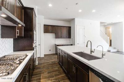 Scottsdale Single Family Home For Sale: 7339 E Vista Bonita Drive