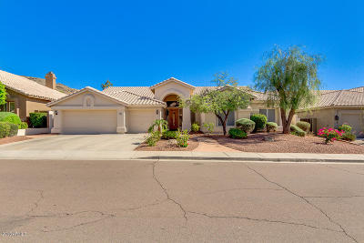 Phoenix Single Family Home For Sale: 3144 E Desert Broom Way
