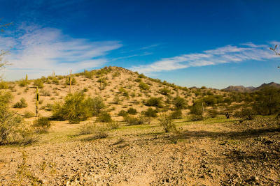 Goodyear Residential Lots & Land For Sale: 17669 W Estes Way