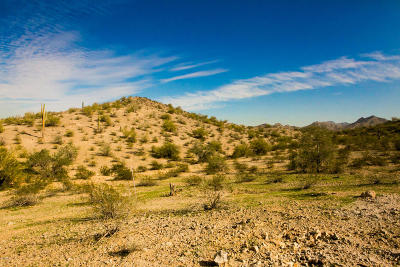 Goodyear Residential Lots & Land For Sale: 17683 W Estes Way