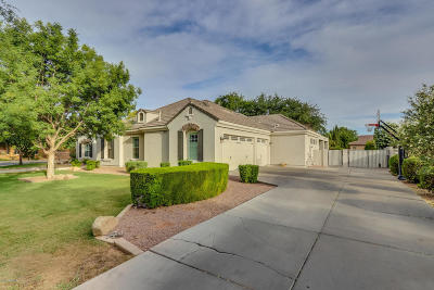 Gilbert Single Family Home For Sale: 2889 E Page Court