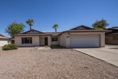 Tempe Single Family Home For Sale: 207 E McNair Drive