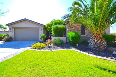 Gilbert Single Family Home For Sale: 6554 S Legend Court