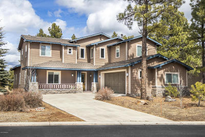 Flagstaff Single Family Home For Sale: 4490 W Braided Rein