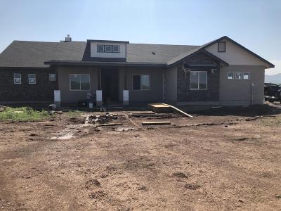 Prescott Valley Single Family Home For Sale: 9645 N Manger Road