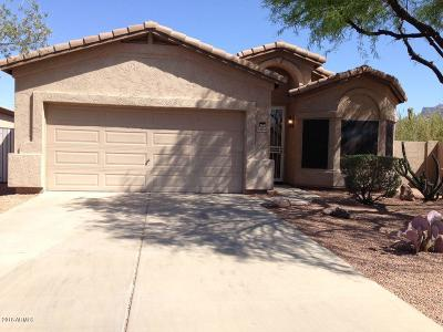 Gold Canyon Single Family Home For Sale: 6868 E Las Mananitas Drive