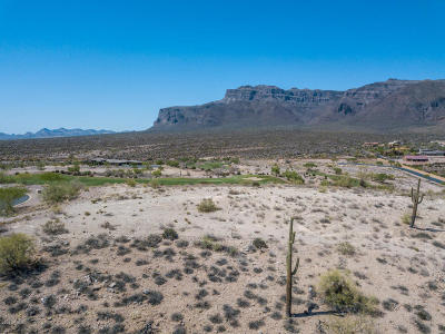 Gold Canyon AZ Residential Lots & Land For Sale: $449,000
