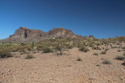 Apache Junction Residential Lots & Land For Sale: 4900 E Lost Dutchman