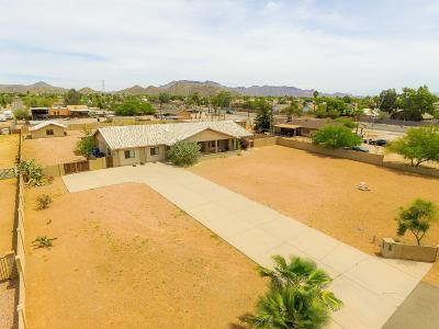 Mesa Single Family Home For Sale: 9138 E Dennis Street