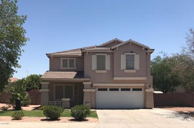 Apache Junction Single Family Home For Sale: 2569 W Hawks Eye Avenue