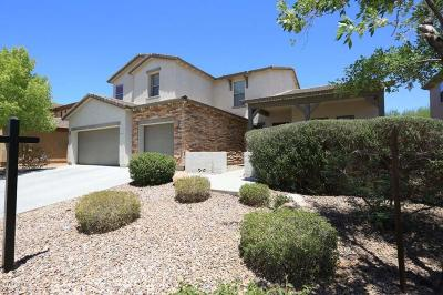 Anthem Single Family Home For Sale: 42613 N 46th Drive
