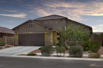 Surprise Single Family Home For Sale: 17532 W Bajada Road
