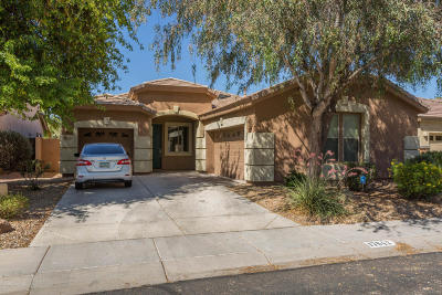 Surprise Single Family Home For Sale: 17642 W Post Drive