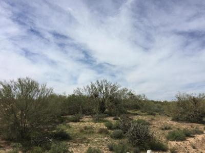 Scottsdale Residential Lots & Land For Sale: 14305 E Carefree Highway