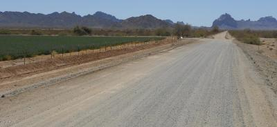 Tonopah AZ Residential Lots & Land For Sale: $20,000