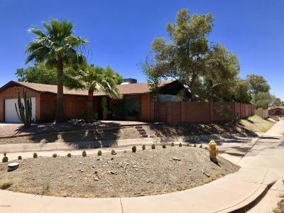 Phoenix Single Family Home For Sale: 801 E Cheryl Drive
