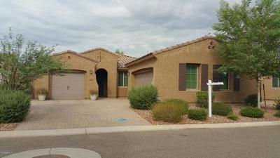 Goodyear Rental For Rent: 1682 N 144th Drive