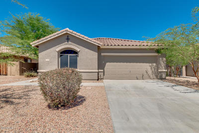 Goodyear Single Family Home For Sale: 13345 S 176th Drive